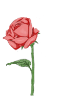 Valentine-Rosen