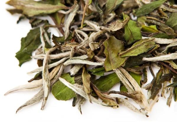 Pai Mu Tan Tee weiss